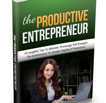 028 – The Productive Entrepreneur PLR