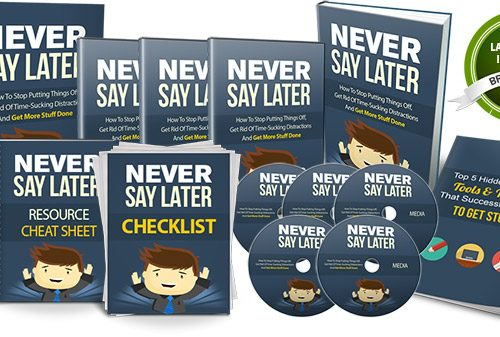 036 – Never Say Later PLR