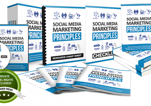 069 – Social Media Marketing Principles PLR