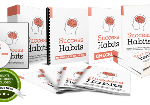 077 – Success Habits PLR