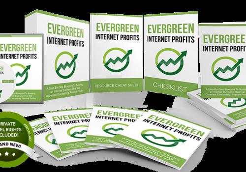 098 – Evergreen Internet Profits PLR